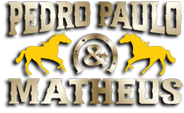 pedropauloematheus.com.br/blog logo